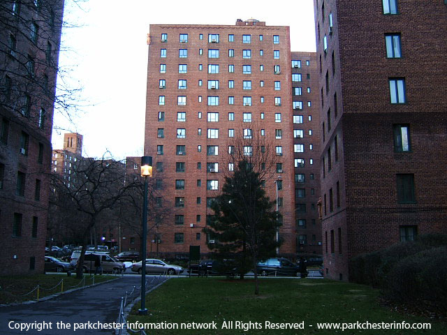 Forum posts on co op city bronx apartments